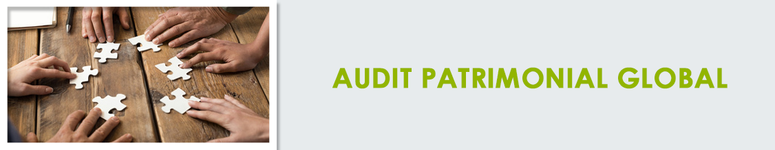 Audit global
